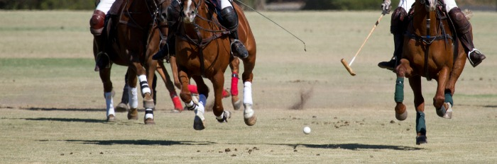 PoloGame1stChukkerSM